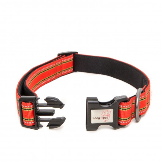 Long Paws Collection Collar Orange with 3M Scotchlite reflective strips 2 sizes